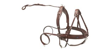 Leather Pair Harnesses
