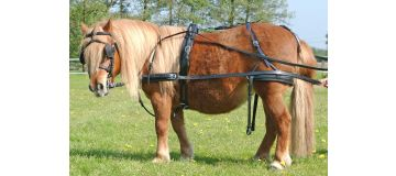 Easy go harness synthetic Shetland single