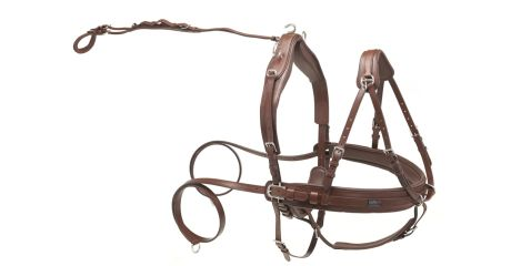 Kieffer leather pair harness